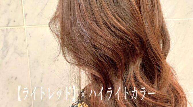 【ライトレッド】×ハイライトカラーBY舩木